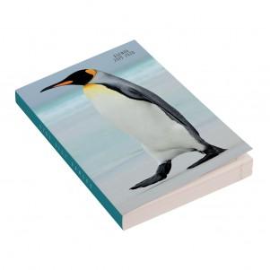 Agenda 12x17cm - 2019/2020 - Pingouin