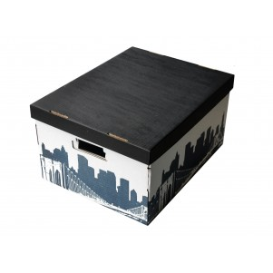 Lot 2 boites de rangement carton 40x31x21cm City