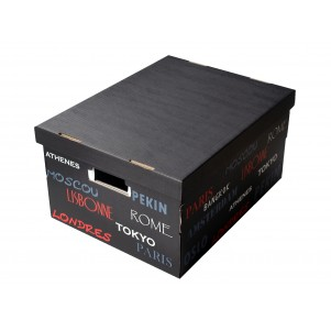 Lot 2 boites de rangement carton 40x31x21cm Capitales